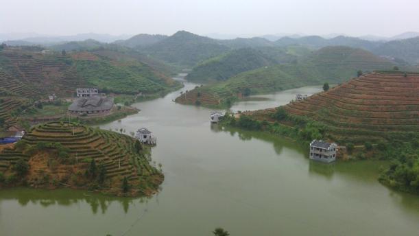 耒阳江头贡茶种植专业合作社